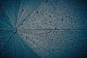Image of a wet umbrella